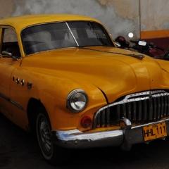 Los viejos carros perennes